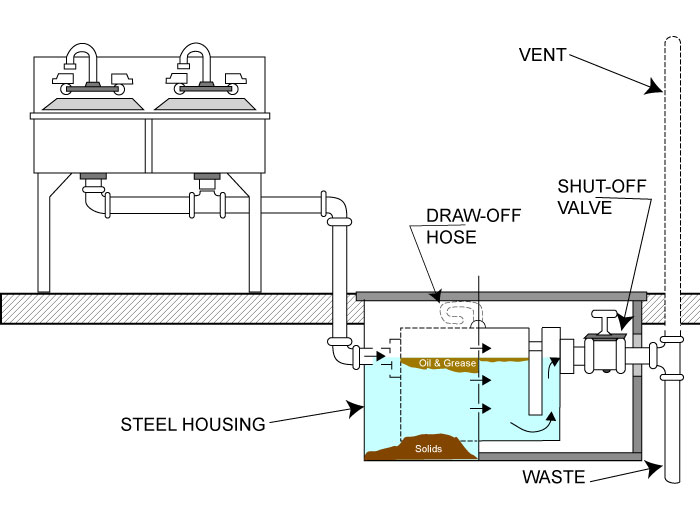 Microbes For Treatment Of Grease Traps